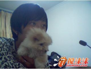 我和我家小狗狗